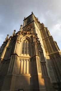 Muenster, cathedral, tower, evening sunlight, Konstanzの写真素材 [FYI02826510]