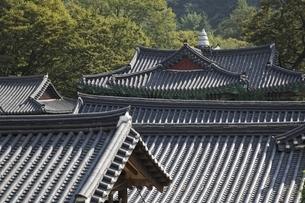 roofs, Magoksa Temple, near Gongju, Koreaの写真素材 [FYI02826636]