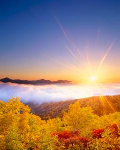 紅葉の樹林と雲海と武利岳などの山並みと朝日の写真素材 [FYI02826746]