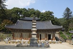 Main Hall, stone pagoda, Daegwangbojeon, Magoksa Templeの写真素材 [FYI02826758]