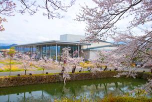 松が岬公園の桜と米沢市上杉博物館・置賜文化ホールの写真素材 [FYI02826833]