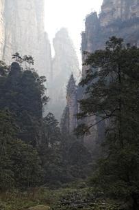 sandstone pillarsの写真素材 [FYI02826918]