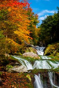 蓼科中央高原横谷渓谷紅葉のおしどり隠しの滝の写真素材 [FYI02826944]
