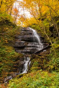 紅葉の奥入瀬渓流九段の滝の写真素材 [FYI02826947]