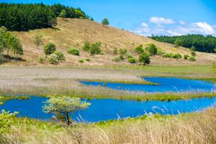 霧ヶ峰高原 春のアシクラの池と踊場湿原の写真素材 [FYI02827150]
