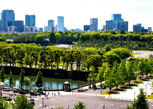 新丸の内ビルディングより皇居前広場と国会議事堂方面の写真素材 [FYI02827337]