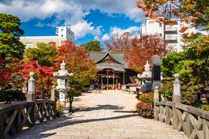 松本市 四柱神社の写真素材 [FYI02827506]