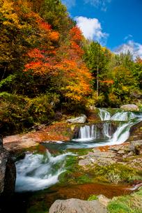 蓼科中央高原横谷渓谷紅葉のおしどり隠しの滝の写真素材 [FYI02827535]