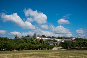 三ノ丸広場より姫路城の写真素材 [FYI02827588]