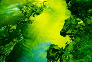 横川渓谷・新緑映す横川の清流の写真素材 [FYI02827616]