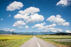 八ヶ岳に延びる道の写真素材 [FYI02827670]
