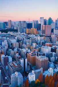 朝の明石町から望む西南西方向のビル群と東京タワーと紅富士の写真素材 [FYI02828017]