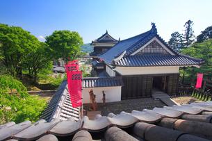 北櫓から望む東虎口櫓門と南櫓の写真素材 [FYI02828149]