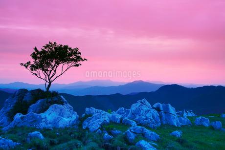 姫鶴牧場の石灰岩群と木立と石鎚山と中津山と朝焼けの写真素材 [FYI02828448]
