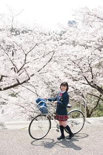 桜と自転車の女子高生の写真素材 [FYI02828927]