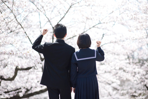 桜と中学生男女後姿の写真素材 [FYI02828949]