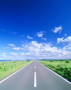 道路と牧草地と海の写真素材 [FYI02829064]