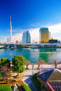 東京スカイツリーと隅田公園と隅田川とファスナーの船の写真素材 [FYI02829148]
