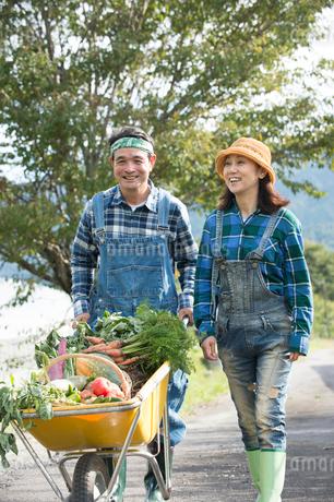 収穫した野菜を一輪車で運ぶ中高年夫婦の写真素材 [FYI02829182]