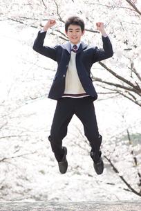 桜とジャンプする男子高生の写真素材 [FYI02829328]