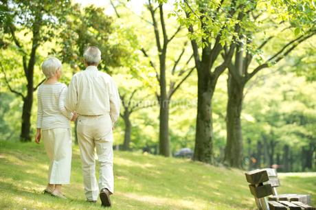 公園を散歩するシニア夫婦後姿の写真素材 [FYI02829333]