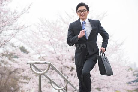 桜と走るビジネスマンの写真素材 [FYI02829777]