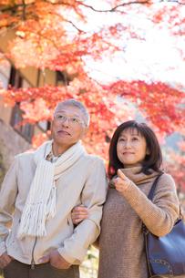 紅葉狩りを楽しむ中高年夫婦の写真素材 [FYI02830498]