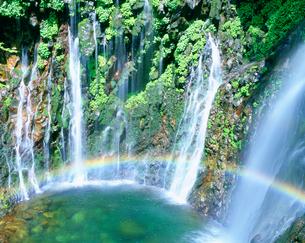 幕滝と虹の写真素材 [FYI02830798]