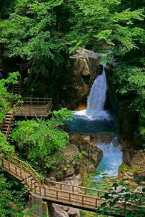 竜神の滝の写真素材 [FYI02830966]