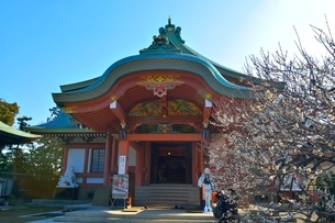 京都 北野天満宮宝物殿の写真素材 [FYI02831228]