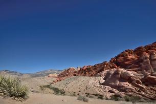地層と色々な色の岩山が並ぶレッドロックキャニオン国立保護区の写真素材 [FYI02831318]