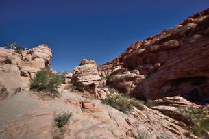 地層と色々な色の岩山が並ぶレッドロックキャニオン国立保護区の写真素材 [FYI02831331]