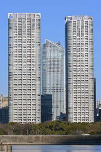 豊海ふ頭より虎の門ヒルズ(中央)と高層住宅を望むの写真素材 [FYI02831429]