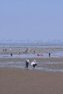 牛込海岸 潮干狩りの写真素材 [FYI02831547]