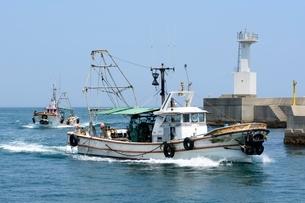 淡路 佐野漁港へ漁船が帰るの写真素材 [FYI02831635]