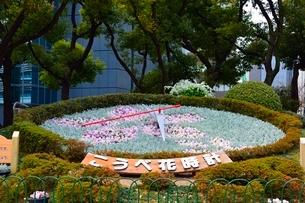 神戸市役所前の花時計の写真素材 [FYI02831719]