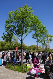木場公園のフリーマーケットの写真素材 [FYI02831841]