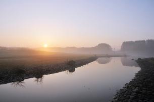 朝の水元公園中央広場の写真素材 [FYI02831933]