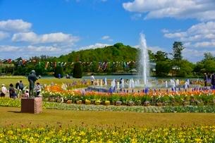 新緑 フラワーセンター 噴水広場の写真素材 [FYI02832171]