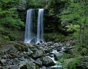 新緑の夫婦滝の写真素材 [FYI02832644]