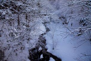 毛受母川(もずもがわ)の雪景色の写真素材 [FYI02832758]
