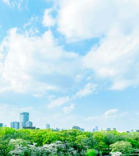 新緑と桜の大阪アメニティパーク(OAP)の写真素材 [FYI02832861]