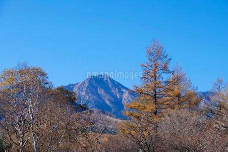 八ヶ岳の写真素材 [FYI02832901]