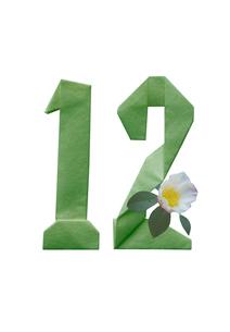 山茶花と数字12の折り紙のイラスト素材 [FYI02832907]