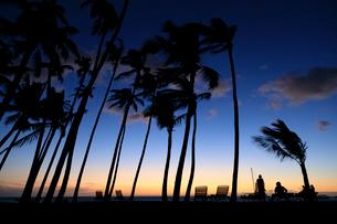 ハワイ島アナエホオマル・ベイの夕陽の写真素材 [FYI02833004]