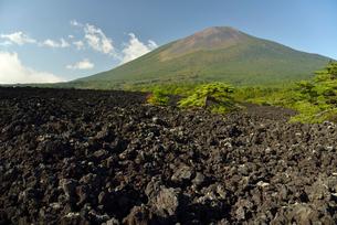 岩手山と焼走り熔岩流の写真素材 [FYI02833034]