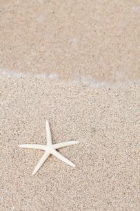 白砂とヒトデの写真素材 [FYI02833097]