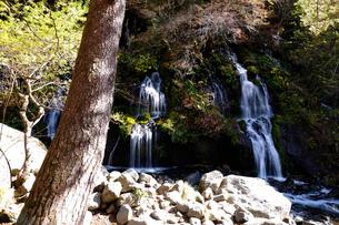 吐竜の滝の写真素材 [FYI02833112]
