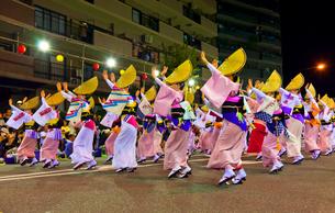 南越谷阿波踊りの流し踊りの写真素材 [FYI02833202]