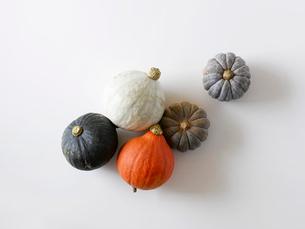 かぼちゃの写真素材 [FYI02833274]